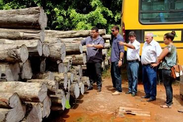 Madeira extraída de Floresta Plantada