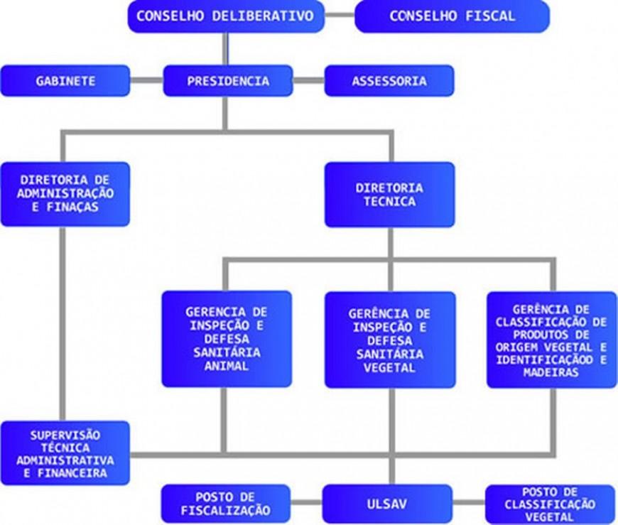 organograma-idaron