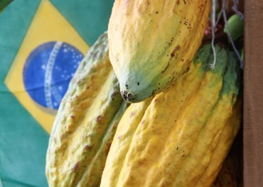 Audiência Pública_Cacau_25.04.14_Fotos_Daiane Mendonça (7)