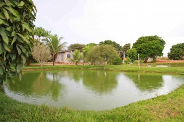 5 - piscicultura vilhena