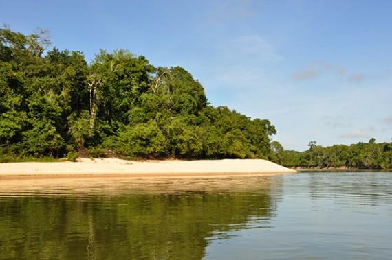 Parque Estadual de Corumbiara - Foto Rosinaldo Machado (4)