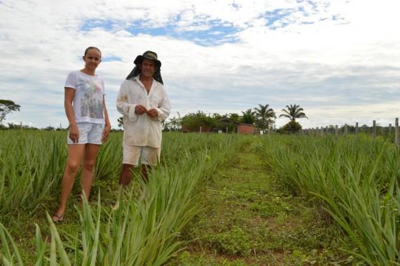 O agricultor Miguel Franco com a filha mostra a lavoura de abacaxi de sua propriedade, que tem também gado leiteiro e peixe