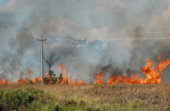 fogo br 425 guajara -fotos de ésio Mendes (2)