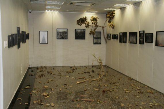 Exposição estará aberta ao público de 3 a 31 de outubro
