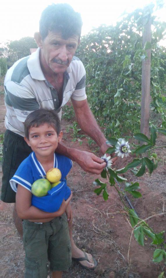 Pai de Douglas ensina o neto a colher o frutos