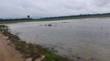 Subida repentina de rios do interior do estado preocupa