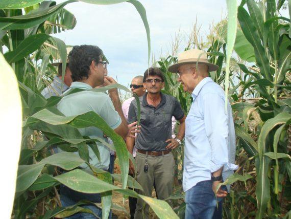Governador Confúcio conheceu a plantação em visita nesta semana ao espaço da Rondônia Rural Show