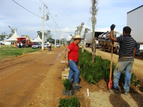 Estandes começam a ser preparados para o maior evento do agronegócio da região